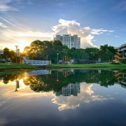 FIU_library-reflection