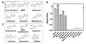 IP 1764-High cross-reactivity of MA to synthetic cathinone drugs and its high specificity against other structurally–similar or –dissimilar interfering agents