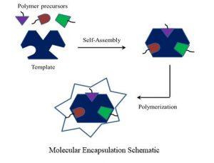 Molecular Encapsulation Schematic