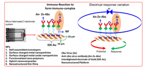 Electrochemical immunosensor for the detection of zika virus at pM level